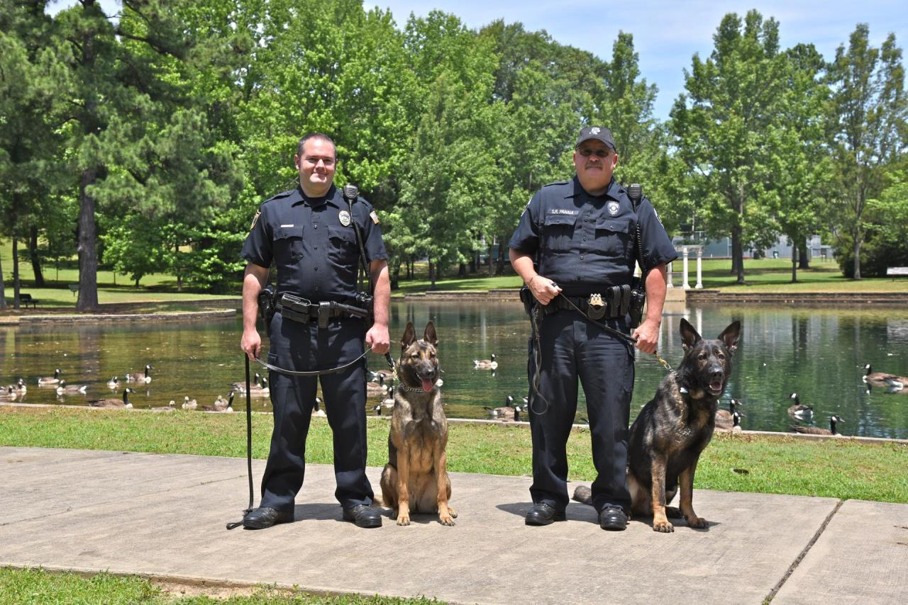two police officers with shepherd police dogs